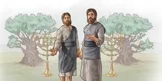 due testimoni